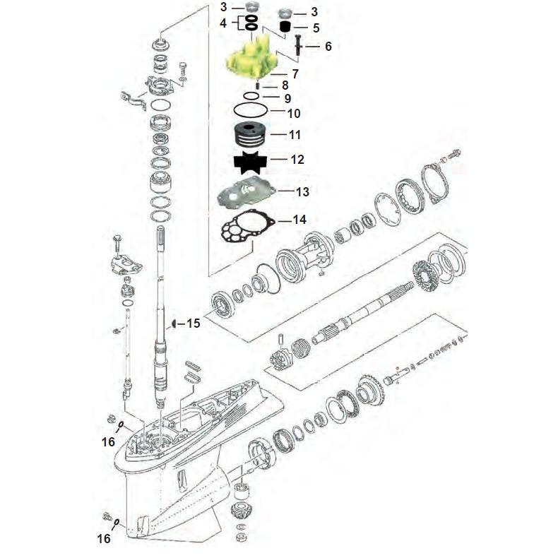 V6 F225 - F250 - F300 Yamaha