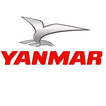 Yanmar Onderdelen